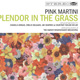 Splendor in the Grass album thumbnail